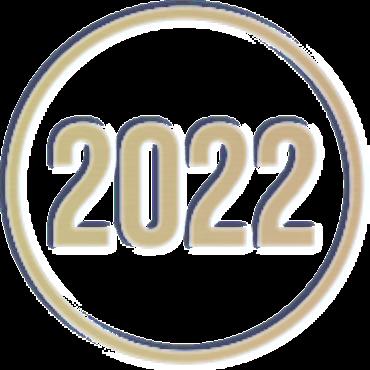 Rok metalizowany RM2